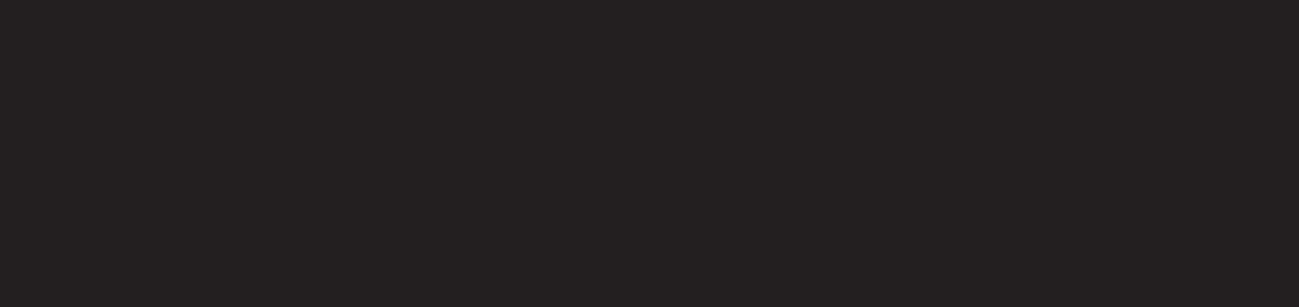 DJ Heckner - logo - Storm DJs agency