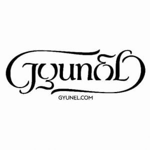 Gyunel Logo - London Fashion Week - Storm DJs